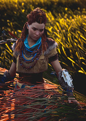 """""""Walking In The Flowers"""" (Omegapepper) Tags: wallpaper screenarchery screenshot gaming games videogame ps4 pro female protagonist aloy horizon zero dawn pose portrait virtual photography photomode digital gametography atmosphere atmospheric colorful nature"""
