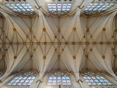 York Minster - Nave Ceiling (Joey Hinton) Tags: olympus omd em1 1240mm f28 mft m43 microfourthirds uk england york minster cathedral church
