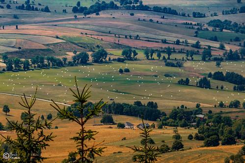 Widoki z Góry Borowej-10