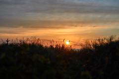 jlvill  121  Sol poniente (jlvill) Tags: ocasos crepúsculos atardeceres sol naturaleza 1001nights 1001nightsmagiccity