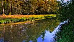 Im Hardtwald bei Karlsruhe (MHikeBike) Tags: landschaft abend sunset farbig himmel wasser büsche wald rheinebene landscape coloured sky water kanal flus pfinz karlsruhe leopoldshafen