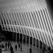 WTC mall b&w
