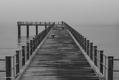 Fishing Pier, Oak Bluffs, MA (John Piekos) Tags: summer d750 nikon dock travel pier fishing ocean black tourist vacation oakbluffs blackandwhite marthasvineyard