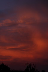 Sunset 7 19 18 #02 (Az Skies Photography) Tags: sun set sunset dusk twilight nightfall cloud clouds sky skyline skyscape rio rico arizona az riorico rioricoaz arizonasky arizonaskyline arizonaskyscape arizonasunset red orange yellow gold golden salmon black july 19 2018 july192018 71918 7192018 canon eos 80d canoneos80d eos80d canon80d