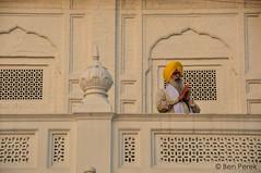 DSC_0882 (Ben Perek Photography) Tags: india punjab amritsar asia hindu sikh golden temple incredible beauty sunset sunrise sun gold piligrimage