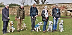 Promoting Guide Dogs appeal