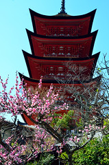 Five-storied Pagoda (Gojunoto) (Gedsman) Tags: japan asia northeastasia eastasia traditional culture cultural shinto buddhist tower neon lights travel beauty architecture island temple photography hiroshima miyajima sea seto inland castle atomicbomb abomb atomic bomb