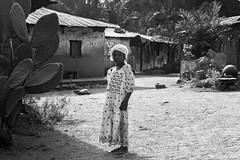 (Irene Becker) Tags: africa imagesofnigeria kaduna kadunastate nigeria nigerianimages nigerianphotos northnigeria westafrica northernnigeria agban village dusai