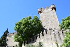 Castillo de Almodóvar del Río (Andalucía, España, 13-6-2018) (Juanje Orío) Tags: 2018 almodóvardelrío provinciadecórdoba andalucía españa castillo castle torre tower biendeinteréscultural