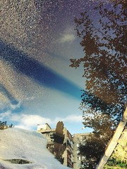 Did you ever wonder if the world in the puddle is real, and your world is just a reflection of it? (colorinspirit) Tags: vagabondphotos streetphotography sunnyrain reflections anotherworld perception puddlereflection hellojuly summerrain aftertherain puddles