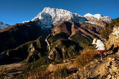 Annapurna III (YogiMik) Tags: annapurna iii nepal himalaya locals people food delivery mountains landscape blue sky summit snow stones path supply greatphotographers caps trees