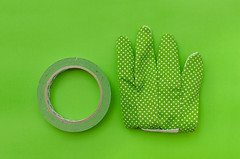 Green (Kajsa Eriksson Color projekt) Tags: kajsa eriksson flatlay flat lay overhead photography plain color project green