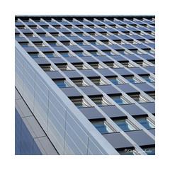More Windows #2 (PeteZab) Tags: building architecture windows line pattern cladding modern multistorey square nottingham uk peterzabulis