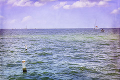 (yosmama151) Tags: boardwalk gulfcoast kemah texas vacation water sea ocean gulfofmexico texture textured 2lotexture