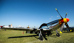 Warbird Area (Experimental Aircraft Association (EAA)) Tags: oshkosh wiwisconsin warbird warbirds av av18 airventure 2018 america