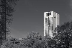 20180417-DSC3774 (A/D-Wandler) Tags: frankfurtammain hessen deutschland hochhaus wolkenkratzer architektur gebäude opernturm bäume himmel taunusanlage blackwhite bw kontrast monochrom baum stadt park