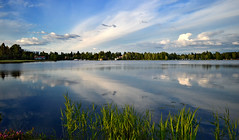 Reflections. Evening on the lake Päijänne, Sysmä, Finland, Summer (L.Lahtinen (nature photography)) Tags: finland summer reflections midsummer evening calm beauty nature sysmä päijänne landscape majutvesi