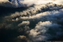 DSC_5242 (www.figedansletemps.com) Tags: brume automne autumn brouillard mist fog foret forest montagne mountain alpes alps chartreuse isère france chamechaude ambiance landscape paysage leverdesoleil lumièredorée goldenlight forêt ciel