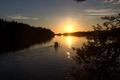 Melonta - Canoeing (iisalmiregion) Tags: kesä summer melonta canoeing lake järvi vesi water ilta evening kesäilta summerevening sunset auringonlasku jyrkkä sonkajärvi meloja melojat wilderness erämaajärvi retkeily