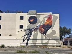 ALLEZ LES BLEUS! (misterbigidea) Tags: french worldcup bluesky cityscape streetscenic artwork walkingaroundoakland beauty city urban building art mural bigbird rooster
