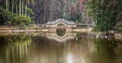 Bridge Reflection -South China Botanical Garden- (Guangzhou, China. Gustavo Thomas © 2018) (Gustavo Thomas) Tags: reflection water botanicalgarden guangzhou guangdong china chinese asia nature travel voyager reflejo life viaje