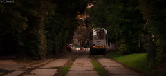 Darkest Hours (WT_fan06) Tags: bucuresti bucharest bukarest urban city romania rumanien summer july sunset dusk tramway v3a 167 green red focal point focus blurry depth field aperture contrast warm public transport transportation street rails tracks photography artsy artistic aesthetic nikon d3400 dslr light shadows 7dwf flickr coth5 readyfortheday old landscape cityscape railroad style nature night white trees bushes garden garten weiss strasse grun zentrum bahn zug haltstelle colours vibrance saturated vibrant sunshine mood atmosphere perspective angle orange cozy