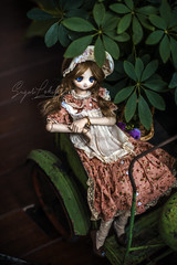 Tiramisu (Sugar Lokifer) Tags: ddh01 dollfiedream dollfie dream bjd ball jointed doll vinyl volks