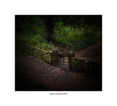 the gate.... (bevscwelsh) Tags: gate woods weprecountrypark northwales fuji23mmf2 fujixpro1