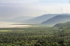 Lake Eyasi from Ngorongoro (tmeallen) Tags: lakeeyasi landscape mountains water forest clouds lodaregate ngorongorocrater tanzania
