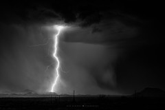 The Lone Gunman (Mike Olbinski Photography) Tags: 20180721 arizona blackwhite cactus canon50mm12l canon5dsr desert interstate8 lightning monsoon mountains rain stormchasing
