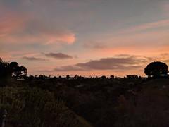 backyard sunset 68/2018 (BorrowedLightPhoto) Tags: backyard sunset 682108 pixel sandiego 92117 california