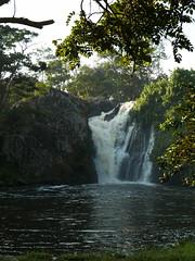 Uganda - Sezibibwa Falls (Shabba Al) Tags: sezibibwa waterfall uganda africa water jungle river outdoors trees