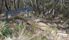 Track times and steps (spelio) Tags: mt victoria nsw blue mountains australia winter bushwalk hike