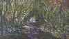 20180402_163720_b (wos---art) Tags: bildschichten wald sträucher bäume äste fusweg wildwuchs natur natürlich gewachsen