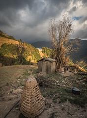 Dhorkarka Farmyard before the storm (Tina Westcott) Tags: dhorkaka landscape approachingstorm nepal2017 baskets farm nepal travel farmdog tibetan mastiff