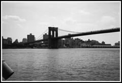 Ponte Brooklyn bn (Claudio T1) Tags: america usa nikon new york thebestofday wordpress bn bw blackandwhite bianconero photoword