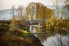 Allouette River (briantolin) Tags: mapleridge britishcolumbia dyke river creek stream water landscape path nature allouetteriver