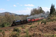 Steam at Birnam Wood (60044) Tags: lner thompson b1 class 1264 61264 jubilee 46699 galetea birnam wood dunkeld 1z60 edinburgh inverness great britain xi steam