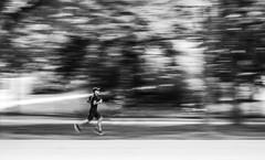Fast (CoolMcFlash) Tags: fast flickrfriday person running speed panning exposure fujifilm xt2 vienna streetphotography street bw blackandwhite bnw monochrome sport schnell laufen geschwindigkeit motion blur mitziehen belichtung sw schwarzweis fotografie photography wien xf35mmf14 r bewegung bewegungsunschärfe