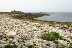 Gros galets (patoche21) Tags: bretagne europe finistere flore france marin nature paysage plante côte galets grisaille littoral mer phare plage roche végétation brittany landscape patrickbouchenard coast coastline seaboard sea beach grayness greyness pebble stone