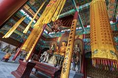 Buddhist Temple in Pairi Daisa (Max Brocel) Tags: shrine interior building wideangle canon 1018mm indoor buddhist temple buddha belgium brugelette zoo daiza pairi pairidaiza