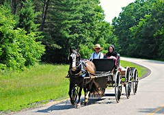 Amish on a rural road near Buffalo, Wisconsin (Cragin Spring) Tags: wisconsin wi midwest rural unitedstates usa unitedstatesofamerica road horse buggy people tree amish