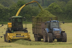 John Deere 6850 SPFH filling a Thorpe Trailer drawn by a New Holland TM165 Tractor (Shane Casey CK25) Tags: john deere 6850 spfh filling thorpe trailer drawn by new holland tm165 tractor nh cnh blue jd green moogely newholland casenewholland self propelled forage harvester traktor traktori trekker tracteur trator ciągnik silage silage18 silage2018 grass grass18 grass2018 winter feed fodder county cork ireland irish farm farmer farming agri agriculture contractor field ground soil earth cows cattle work working horse power horsepower hp pull pulling cut cutting crop lifting machine machinery nikon d7200