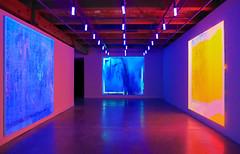 Luminousity (Adaptabilly) Tags: louisiana usa art travel neworleans gallery ceiling floor lights painting lumixgx7 colour