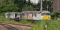 Grids awaiting there fate (Shed seven) Tags: 56031 56032 56037 56104 56106 56312 56098 leicester tmd