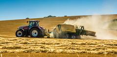 Sommerzeit (Fotos aus OWL) Tags: landwirtschaft landschaft farming farm presse krone steyr