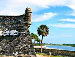 Castillo de San Marcos Watchtower (Chris C. Crowley) Tags: castiullodesanmarcoswatchtower castillodesanmarcos fort staugustine historic americasoldestcity matanzasriver gunturret architecture bird palmtrees scenic water bluesky clouds