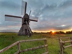 Schöpfmühle Honigfleth (y.brzelinski) Tags: windmühle windmill mill honigfleth schleswigholstein norddeutschland wilster