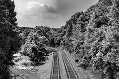 Storm coming over the tracks (Shawn Blanchard) Tags: clouds trees sky rail railroad tracks norfolk southern charlotte north carolina train black white bw