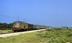 1988  22647  I (Maarten van der Velden) Tags: italië italy italien italie italia marinadichèuti fs fse424060 fse424 train12468